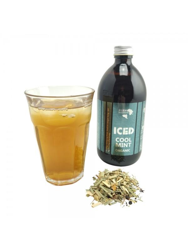 ICED Tea - assorteret