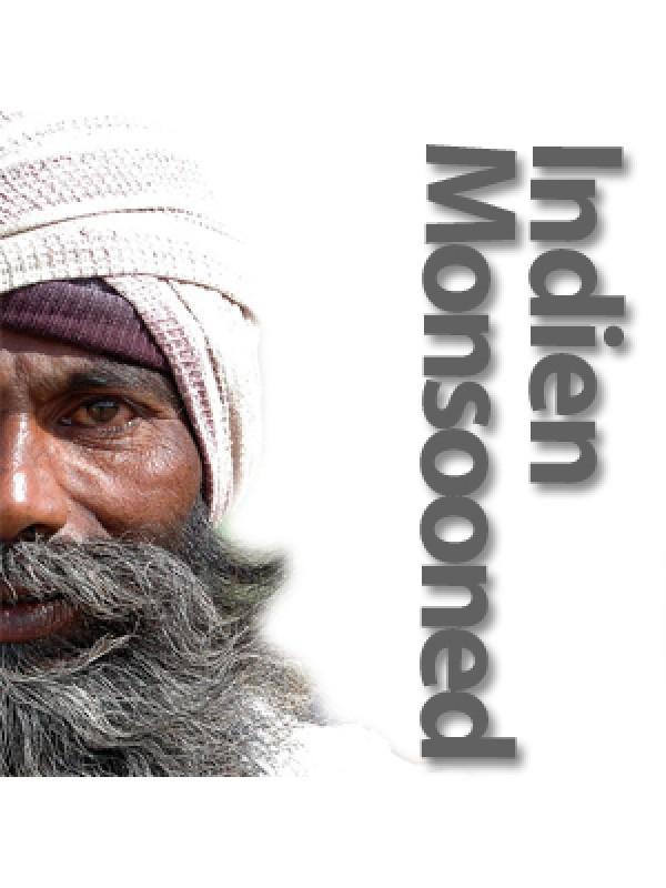 Indien Monsooned Malabar AA rå bønner-08