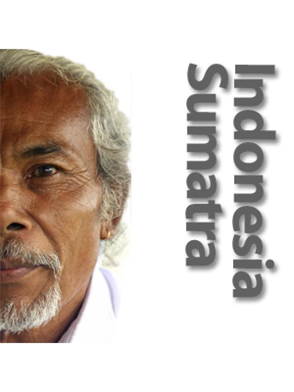 Indonesien Sumatra Mandheling Grade 1 Scr 18/19 rå bønner-02