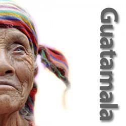 Guatemala Huehuetenango - rå bønner
