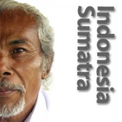 Indonesien Sumatra Mandheling - rå bønner
