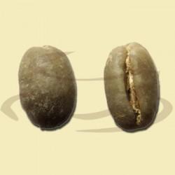 Papua Ny Guinea Sigri Peaberry rå bønner-20