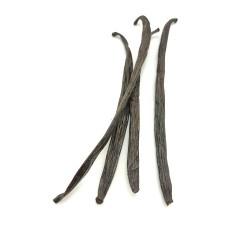 Vaniljestang Uganda 1-3 gr.-20